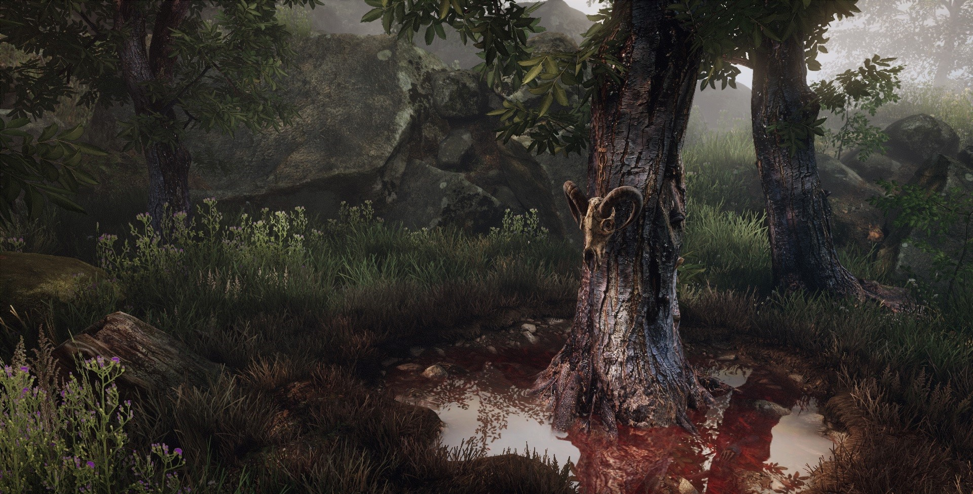 The Vanishing of Ethan Carter - recenze